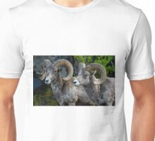Big Horn Rams    #5827 Unisex T-Shirt