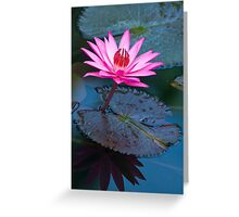 Reflections - pink waterlilly  Greeting Card