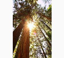 Tall Pines In Sunshine Unisex T-Shirt