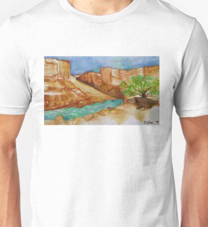 Soap Creek Unisex T-Shirt