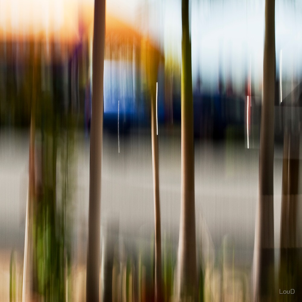 Cafe umbrellas #03 by LouD