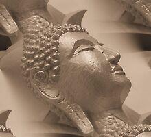 The many faces of Buddha by Matt Nolan