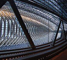 Tokyo International forum view by vesa50