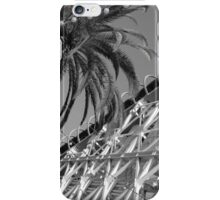 Coaster Road iPhone Case/Skin