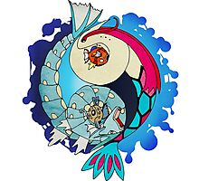Paint-Splattered Aquatic Yin Yang - Milotic & Gyarados Photographic Print