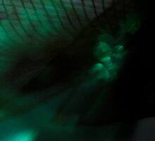 GREEN DREAM II by June Ferrol