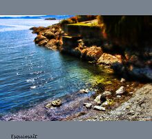 Esquimalt Beach by Nick  Kenrick Photography
