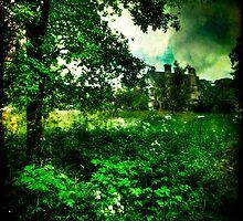 Nunnington Hall, Wild Gardens by Lucy Martin