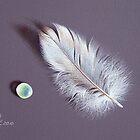 Feather and sea glass # 2 by Elena Kolotusha
