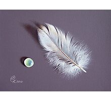 Feather and sea glass # 2 Photographic Print