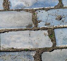 The fragrance of blue pavement by patjila
