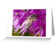 Full of pollen Greeting Card