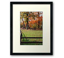 Park Peace Framed Print