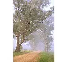 Country lane in fog Photographic Print
