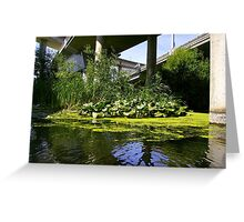 The water garden under the bridge Greeting Card