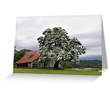 Magestic Tree, and Childhood Memories   Greeting Card