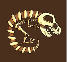 Dino Fossils by jellysoupstudio