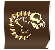 Dino Fossils Poster