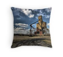 State of the Economy  Throw Pillow