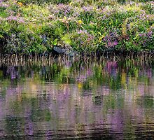 Monet's Heather by Marylou Badeaux