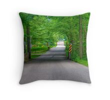 Pleasant Drive Throw Pillow