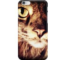 Silly Whiskers iPhone Case/Skin