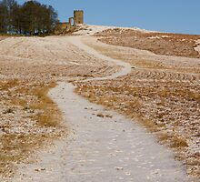 Winter in Bradgate Park by Andy Stafford