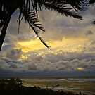 Stormy Skies in Paradise by Barbara  Brown