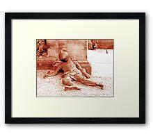 Fallen Soldier, Harewood House Framed Print