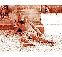 Fallen Soldier, Harewood House Photographic Print