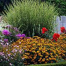 Outside Garden by Kathleen Struckle