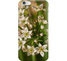 Chive Flowers iPhone Case/Skin