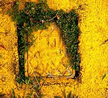 Yellow with bits of.... by D. D.AMO