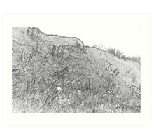 Alpine Daisies in Outline Art Print