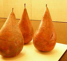 oranges or Pears? by D. D.AMO