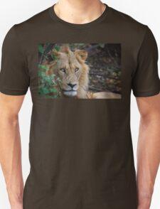 Lion Eyes T-Shirt