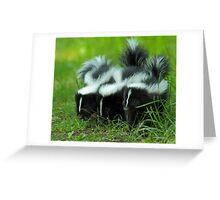 Baby Skunk Trio Greeting Card