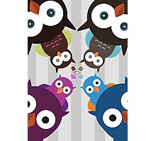 Owl Crowd Photographic Print