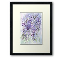 The Wisteria's scent Framed Print