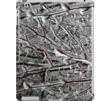 Ice Kingdom iPad Case/Skin