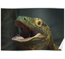 Komodo Smile Poster