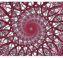 Pink Wire Spiral Photographic Print