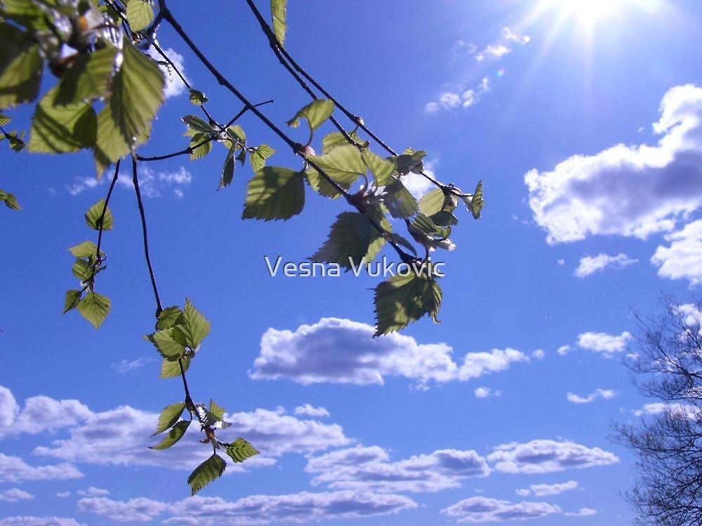 A new day by Vesna ©
