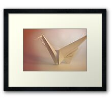 Learn to Fly... Framed Print