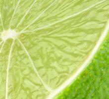 Lime #5 Sticker