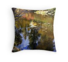 """Morning Stillness"" Throw Pillow"
