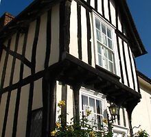 Yellow Roses, Lavenham, Suffolk by wiggyofipswich