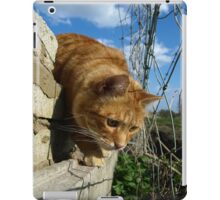 On a mouse hunt iPad Case/Skin