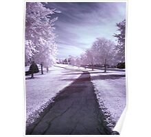 Infrared walkway Poster