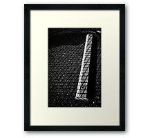 Caged Fury Framed Print